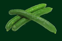 Длинноплодные огурцы
